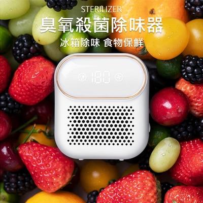冰箱除臭器/臭氧機 食物保鮮 家用淨化器 臭氧殺菌 去異味/淨化空氣/廁所/廚房 USB充電