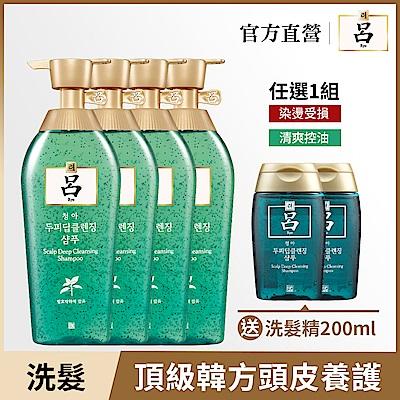 [時時樂限定]RYO呂 清爽控油/染燙受損洗髮精限定加量組 (兩款任選)