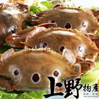 【上野物產】鮮凍萬里三點蟹 (100-150g/隻)x12隻