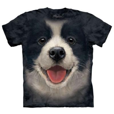 摩達客-美國進口The Mountain 小邊境牧羊犬微笑 純棉環保短袖T恤