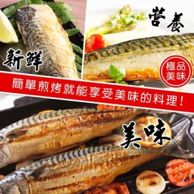 【上野物產】挪威薄鹽鯖魚片 x10片(160g土10%/片)