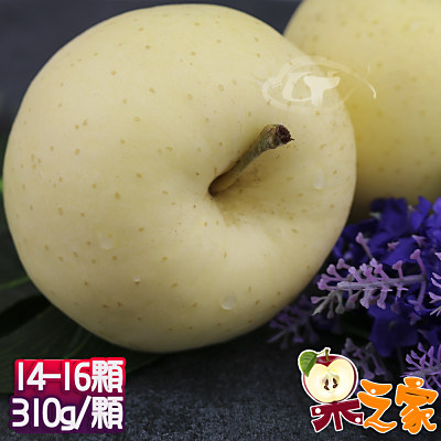 果之家 日本青森稀少種無蠟金星蘋果特級14-16顆禮盒(約5kg,單顆為350-310g)