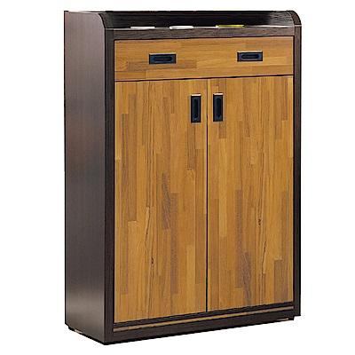 綠活居 瑞米現代2.7尺二門二抽鞋櫃/玄關櫃-80x40x122cm免組