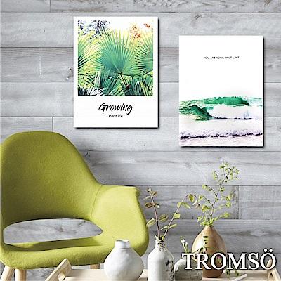 TROMSO 時尚無框畫-清新浪潮