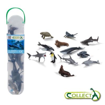 CollectA迷你海洋生物組1(盒裝-12入)~英國高擬真模型R1107