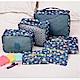 韓國限定款粉彩輕量超透氣旅行收納袋/衣物收納袋/行李箱收納包(六件式) product thumbnail 1
