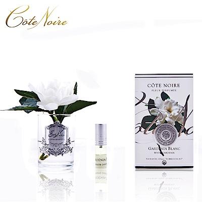 法國 CoteNoire 蔻特蘭 單朵槴子花香氛花透明瓶