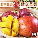 林家水果城 台南玉井直送愛文芒果(5斤/箱)