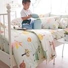 OLIVIA  小森林 綠 標準單人床包夏日涼被三件組 300織精梳純棉 台灣製