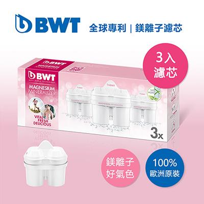 BWT德國倍世 Mg2+鎂離子8周長效濾芯-三入組