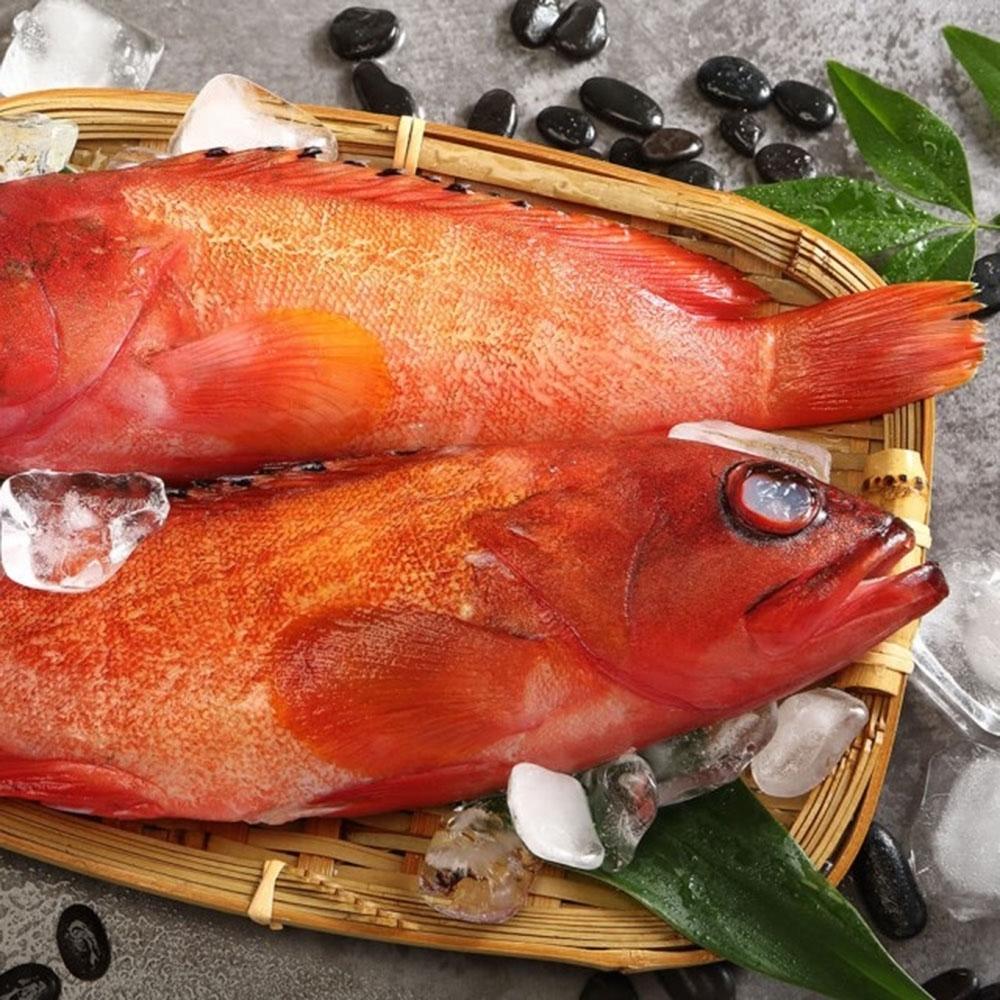 (滿額免運)上野物產-菲律賓紅石班 x5隻(250g土10%/隻)