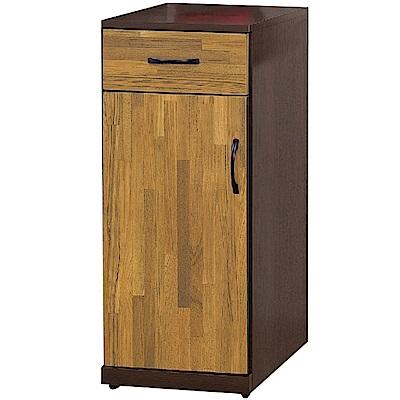 文創集 里莎時尚1.3尺單門中鞋櫃/玄關櫃(二色可選)-39x38x90cm免組