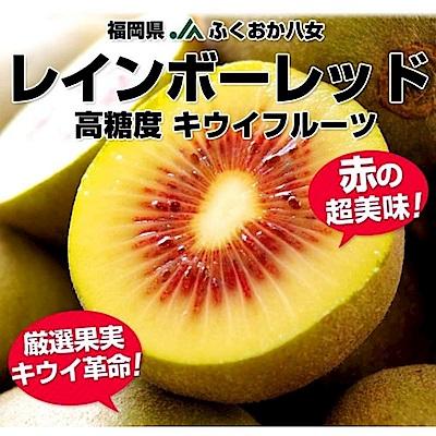 【天天果園】日本福岡彩虹紅心奇異果(每袋5-7顆/共約350g) x5袋