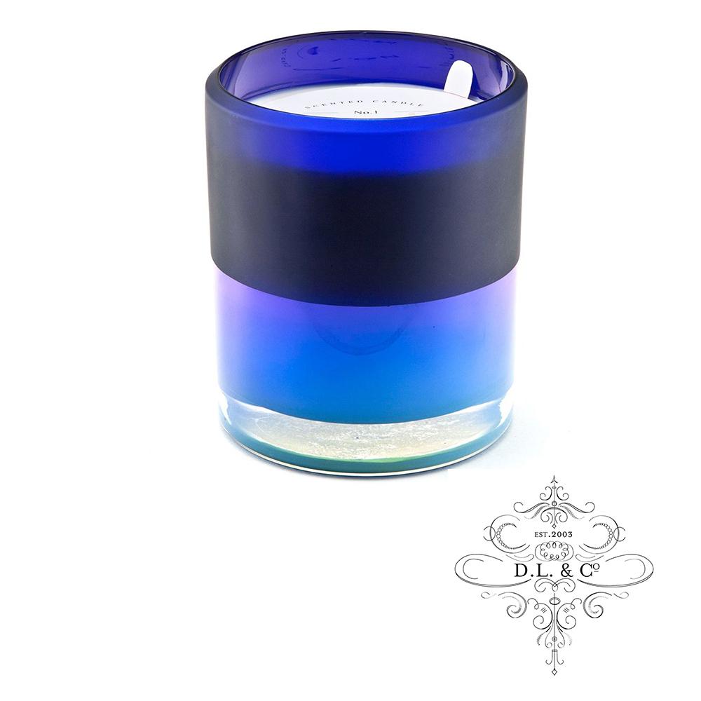 美國 D.L. & CO. 霓虹光瓶系列 桉樹針葉 香氛禮盒 709g