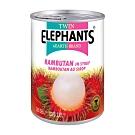 雙象地球牌 糖水紅毛丹(565g)