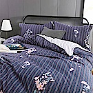 夢工場 風韻悠遠60支紗長絨棉床包兩用被組-雙人