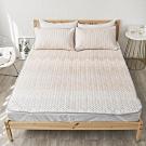 Adorar  TENCEL天絲可水洗軟涼蓆+涼枕墊三件組-雙人加大(雅緻晶燦)