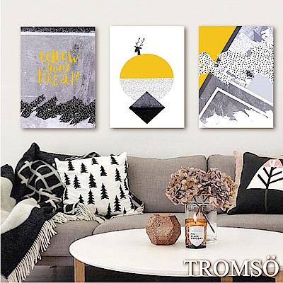 TROMSO時尚無框畫-潮流時代