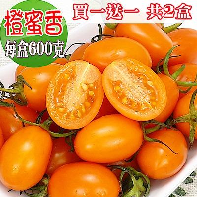 愛蜜果 買一送一 橙蜜香小番茄(600克/每盒) 共2盒