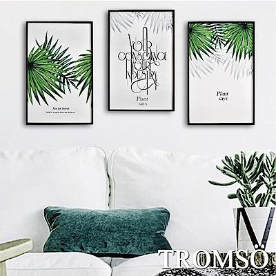 TROMSO 北歐生活版畫有框畫-北歐綠葉WA63(三幅一組)