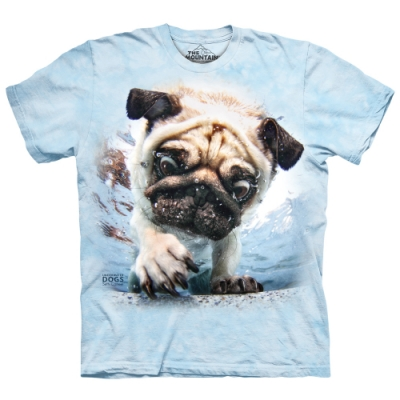 摩達客-美國The Mountain 水中巴哥犬 純棉環保短袖T恤