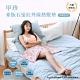 韓國甲珍 麥飯石遠紅外線熱敷墊 SHP612 product thumbnail 1