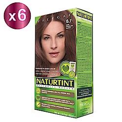 NATURTINT 赫本染髮劑 6.7淺巧克力棕x6 (155ml/盒)