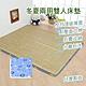星辰 青竹冬夏兩用雙人床墊(藍幸運草) product thumbnail 1