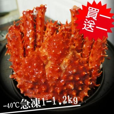 築地一番鮮-【買1送1】比臉大急凍智利帝王蟹1隻(1-1.2kg/隻)免運組