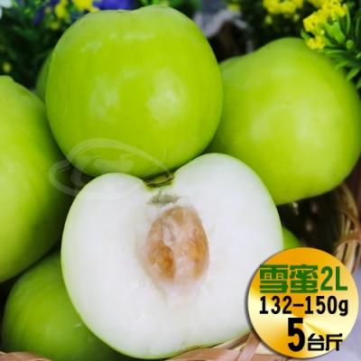 【果之家】燕巢產銷履歷網室特選珍稀品爆汁2L款雪梨蜜棗5台斤(單顆約140g)