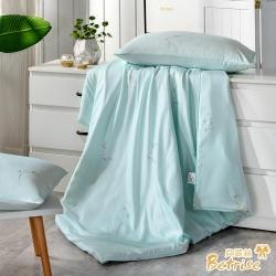 Betrise清畫  3M吸濕排汗天絲四季被5X6.5尺(加碼贈天絲枕套X2)