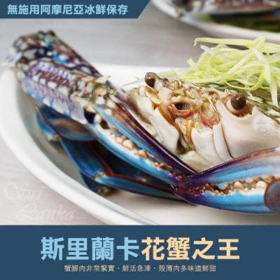 【築地一番鮮】巨無霸斯里蘭卡公花蟹4隻(400g/隻)