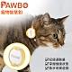 Pawbo波寶 寵物智慧釦/運動追蹤器-黃 ZCX01TE00E product thumbnail 2
