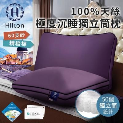 【Hilton希爾頓】國際精品面料100%天絲60支紗極度沉睡獨立筒枕 兩入組(B0117-L)