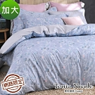Tonia Nicole東妮寢飾 青韻絮語100%精梳棉兩用被床包組(加大)
