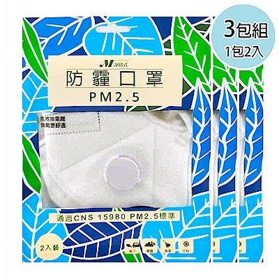 淨舒式 防霾口罩PM2.5(含呼吸氣閥) (3包組一包2入)(白)