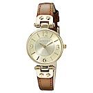 Anne Klein 漫步塞納河畔精緻小牛皮腕錶-香檳金x29mm AK-9442CHHY