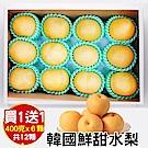 買1送1【天天果園】韓國甜潤XL水梨禮盒(6顆/每顆約400g) 共2盒