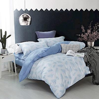夢工場 晨雲暮間天絲頂規款兩用被鋪棉床包組-特大