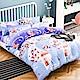 A-ONE 兒童單人床包涼被三件組(吸濕排汗材質)-冰河遊記 MIT台灣製 product thumbnail 1