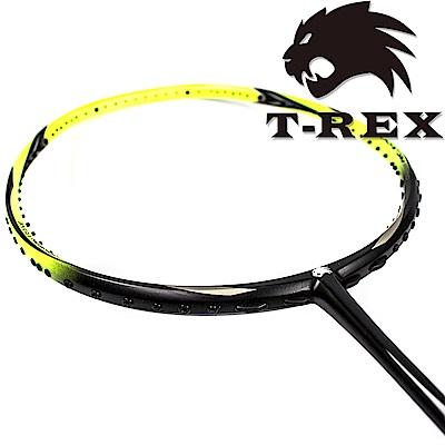 T-REX 雷克斯 - 消光型碳纖維羽球拍 YS- BS-黃黑