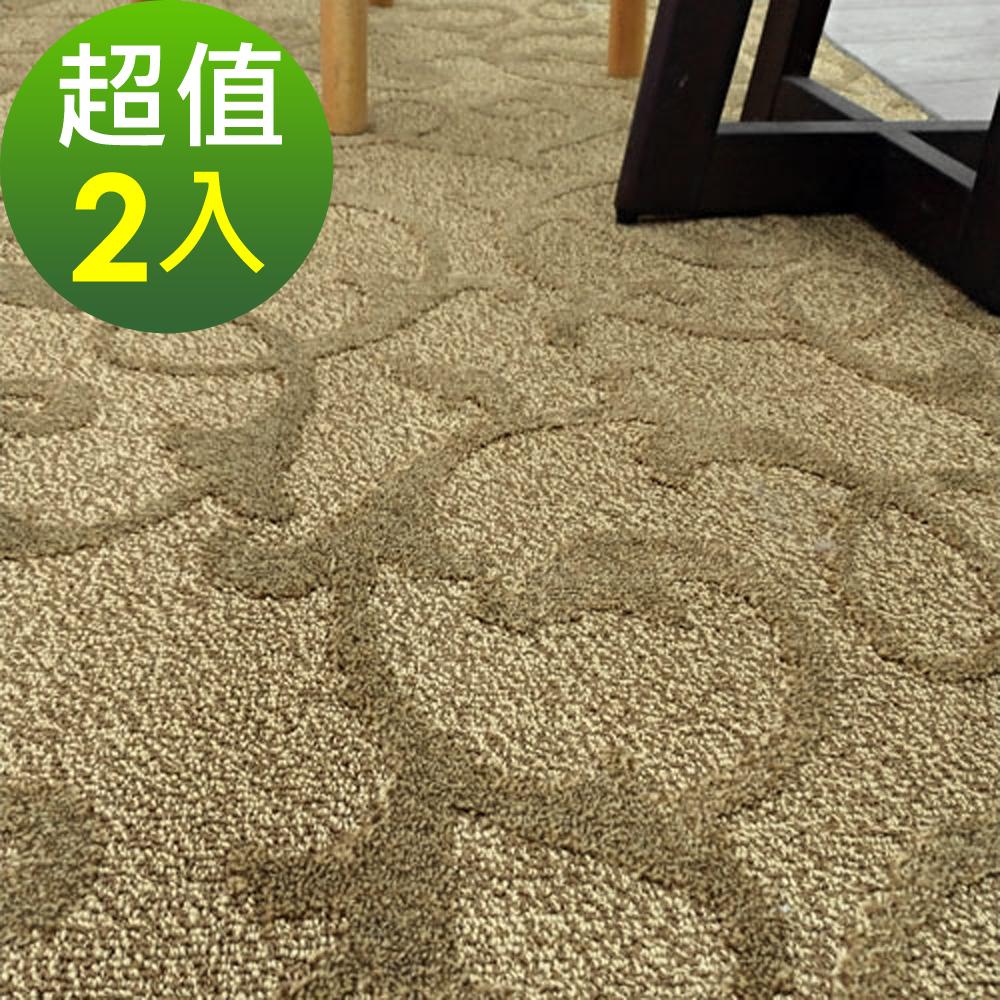 范登伯格 - 雲遊-時尚素面進口地毯-阿拉斯加-(兩入)-105x156cm