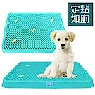 寵物物語 可拆式犬用小便盆 (綠色)