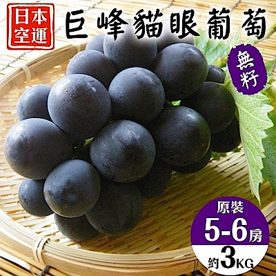 【天天果園】日本原裝貓眼葡萄3kg (5-6串)