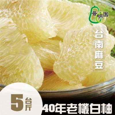 普明園‧台南麻豆40年大白柚(5台斤/箱)