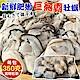 【海陸管家】日本廣島巨無霸2L牡蠣(每包10顆/共約350g) x2包 product thumbnail 2