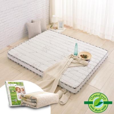 (新鮮人組)雙人5尺-法國防蹣防蚊天絲頂級獨立筒床-輕量型