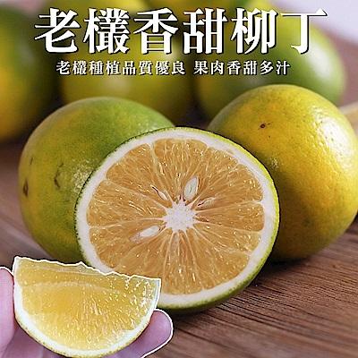 (滿799免運)【天天果園】雲林古坑綠柳丁x2斤 (約11顆)