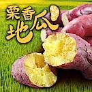 【愛上新鮮】特A級日本栗香地瓜6包(300g/包)