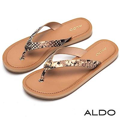 ALDO 金屬圓環人字形夾腳涼鞋~性感蛇紋